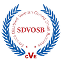 SDVOSB1